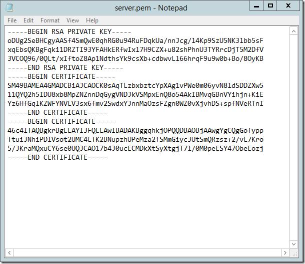 Example server.pem